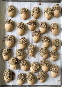 chocolate dipped walnut acorn cookies gluten free #glutenfreerecipes www.healthygffamily.com