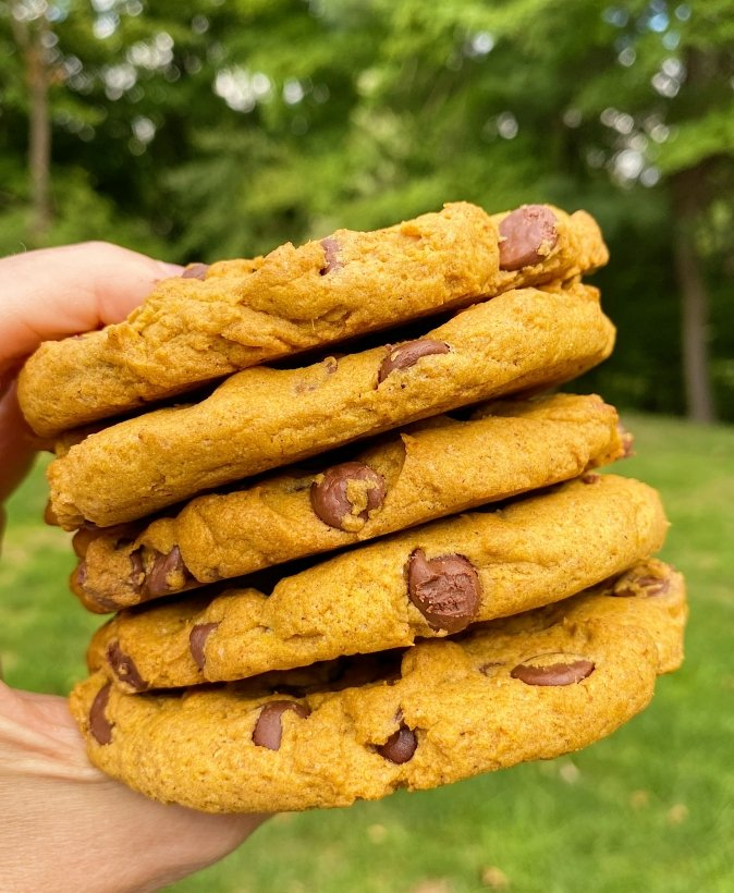 gluten free pumpkin chocolate chip cookies #glutenfree #glutenfreerecipes www.healthygffamily.com